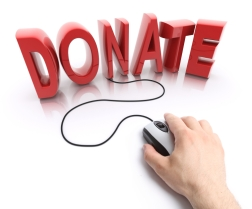 Make 2013 the year online giving takes off for your nonprofit.