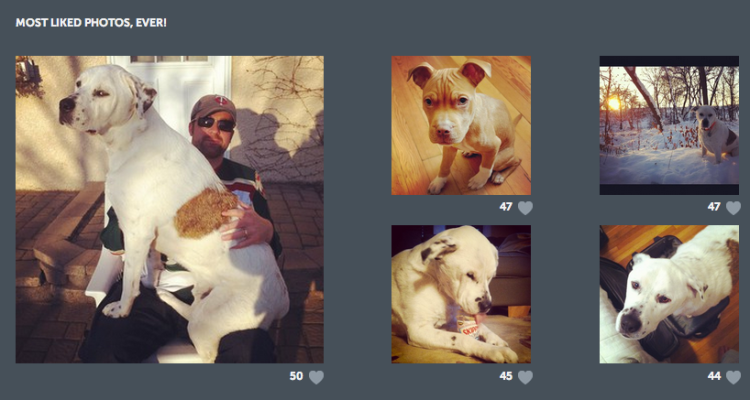 Statigram tells you which of your Instagram photos have received the most likes.