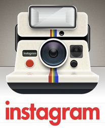 Instagram is the king of social media networks when it comes to audience engagement.
